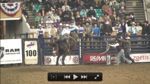 Denver Rodeo 2014 - Western Point